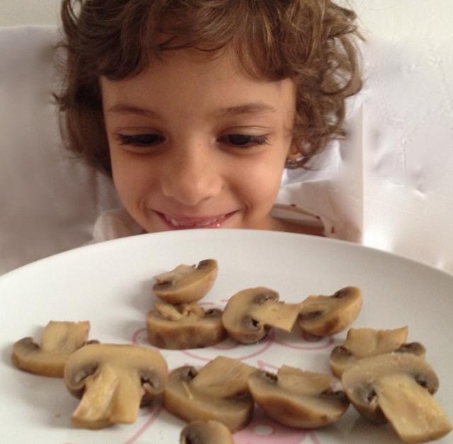 cogumelos_nina