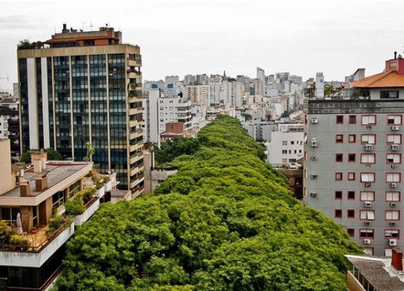 http://www.hypeness.com.br/2014/01/conheca-a-rua-que-ficou-famosa-por-ser-a-mais-bonita-do-mundo-e-e-no-brasil/