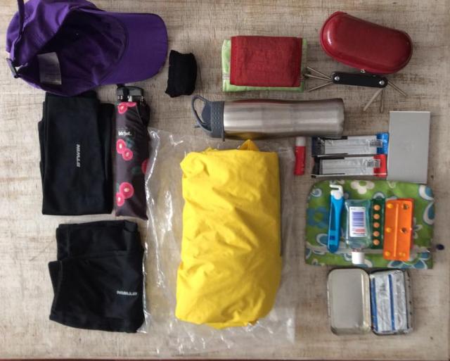 Boné + capa de chuva, guarda-chuva, manguito + pernito + meia para frio, carteira+dctos+necessaire, óculos, bateria extra para celular + celular, garrafa dádua, algo pra comer.